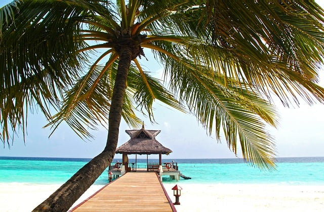 Playa de lujo para viaje